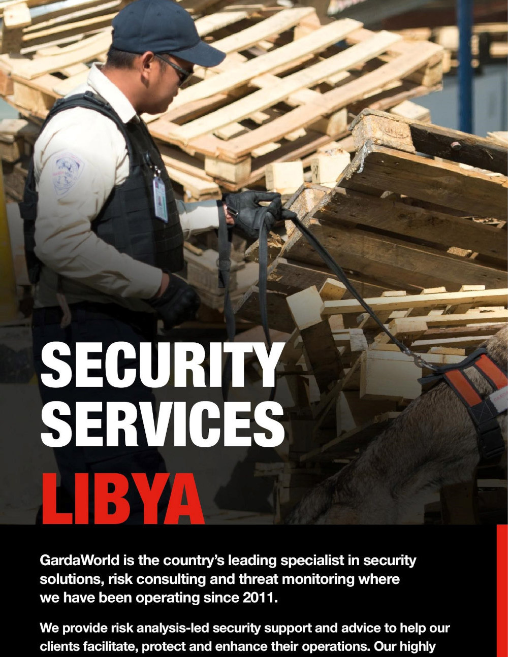 Libya Security Services Capability Sheet