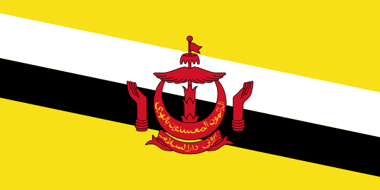 Brunei Darussalam Country Report