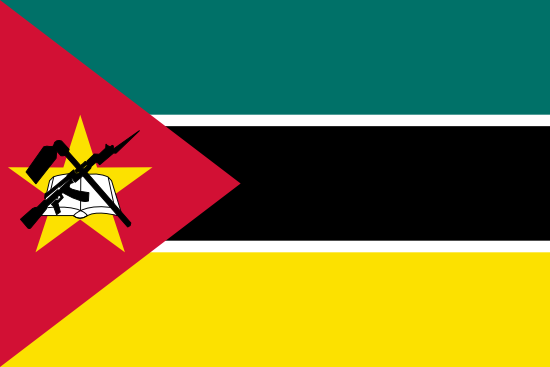 Mozambique News Alert